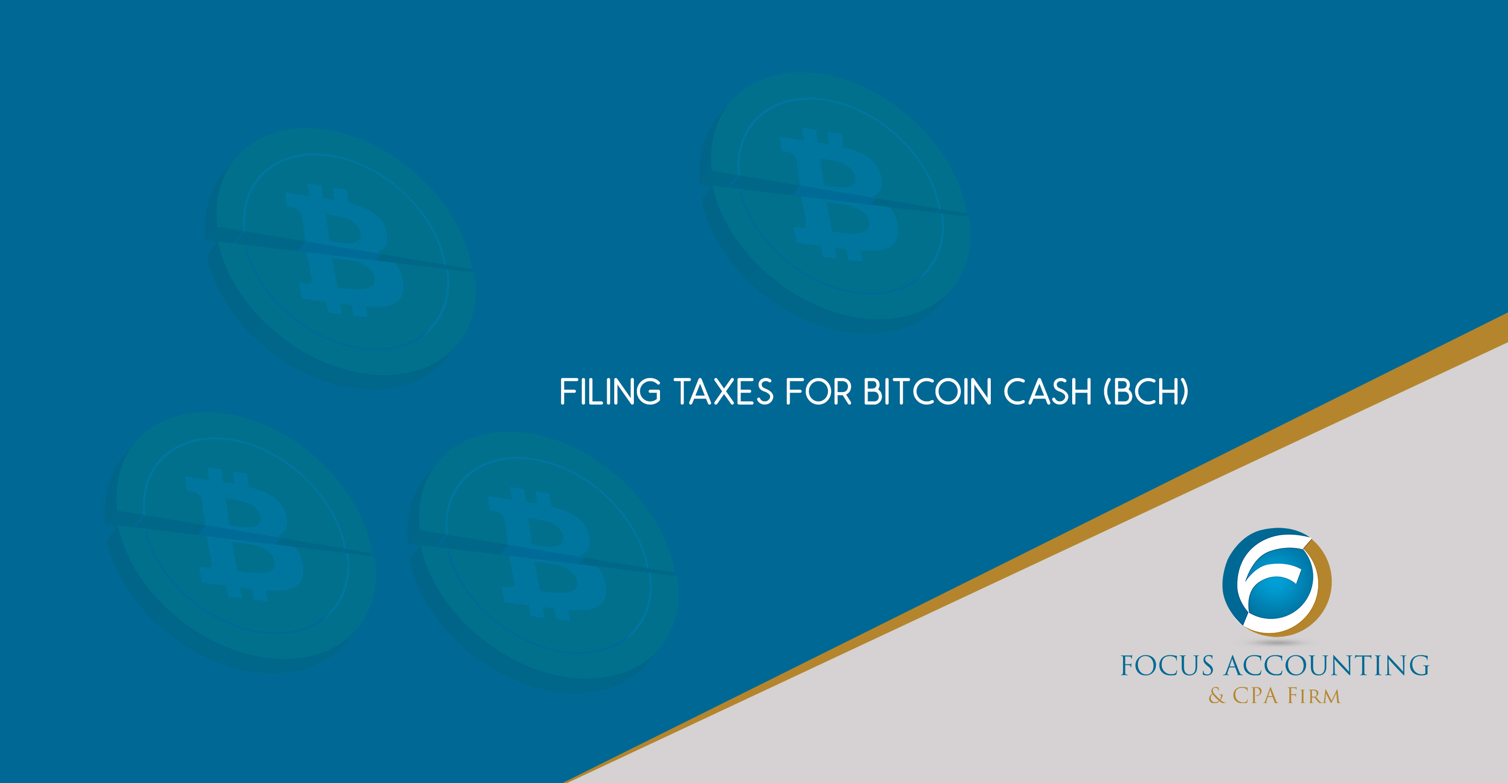 Filing Taxes for Bitcoin Cash